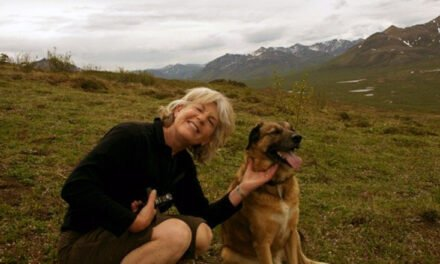 Dog Culture – Sharon Edmunds