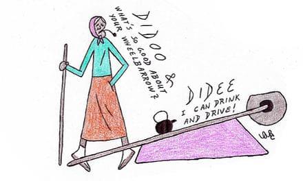 Didee & Didoo: My Wheelbarrow