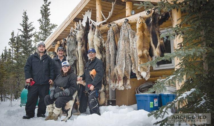 Yukon furry