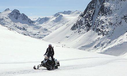 Yukon spring sledding