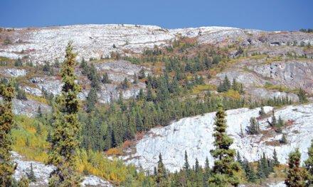 Limestone reefs in southern Yukon