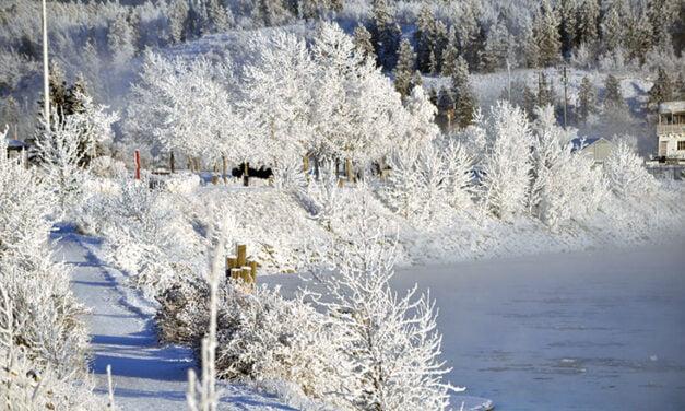 Yukon See It Here – Murray Martin