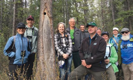 Celebrating 25 years of the Yukon Bird Club