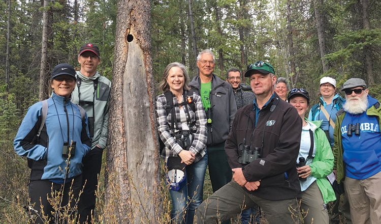 Celebrating 25 years of the Yukon Bird Club