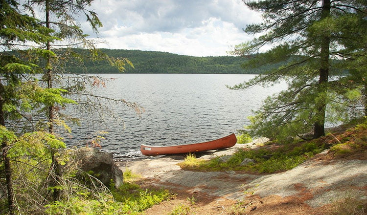 A long time ago, in a lake far away