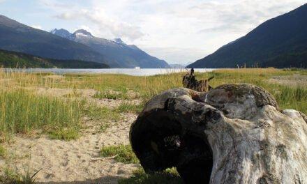 Forgotten Town: Dyea, the town Alaska forgot