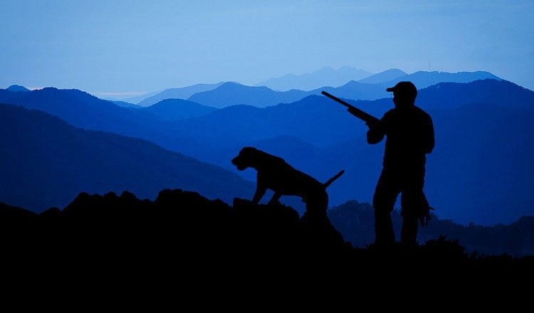 Nature versus hunting