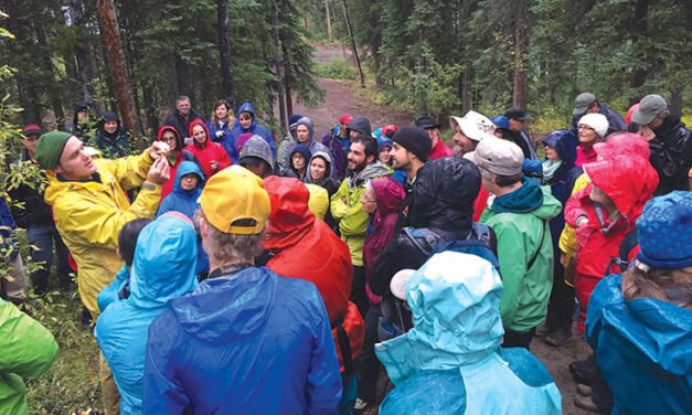 Wildlife viewing program offers free nature walks and talks