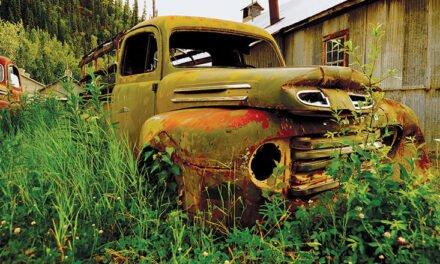 Yukon See It Here – Jonny Wilkie
