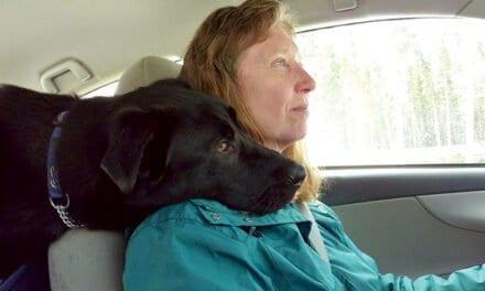 Dog Culture – Carol Foster