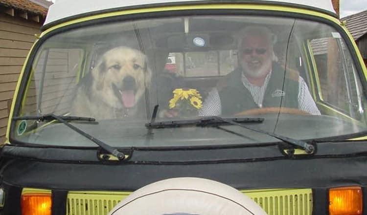 Dog Culture – Don McMillan