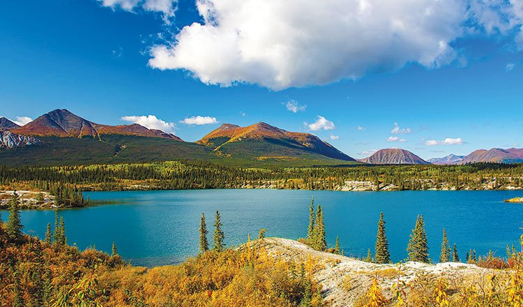 Yukon See It Here – Steve Wilson