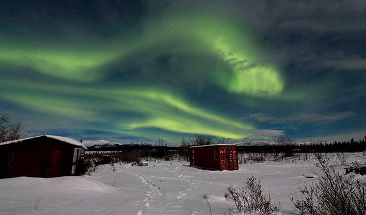 Yukon See It Here: Liam Cowan