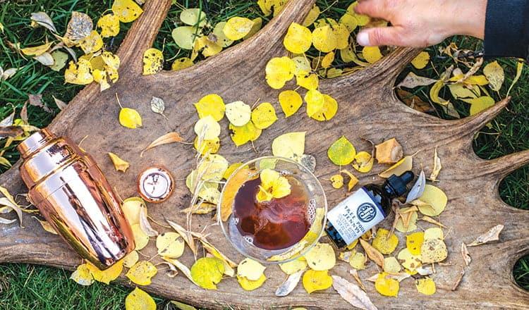 Crisp, colourful autumn cocktails
