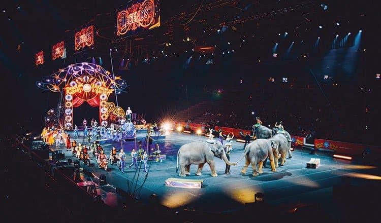 Not my circus…