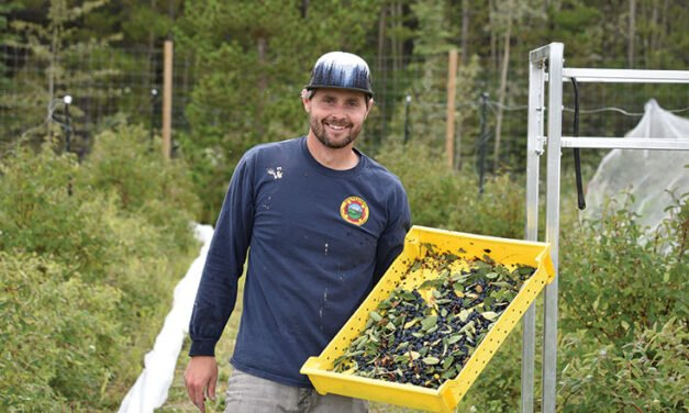Bringing local food to Yukoners