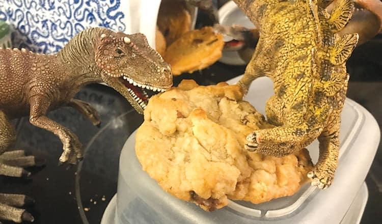 Dino-riffic!